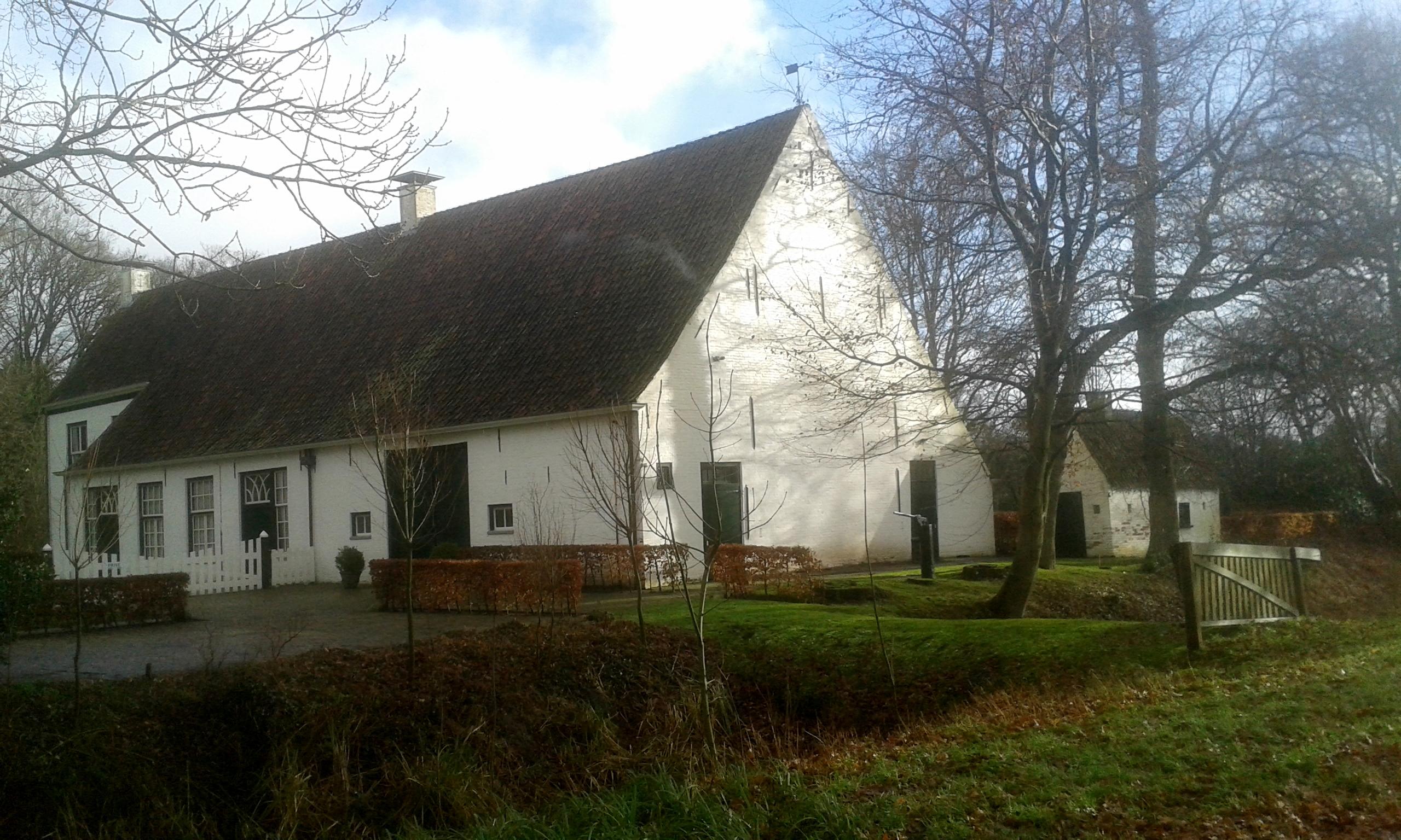 Steenhuis1