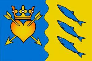 Dorpsvlag-Nuis-Niebert-banner